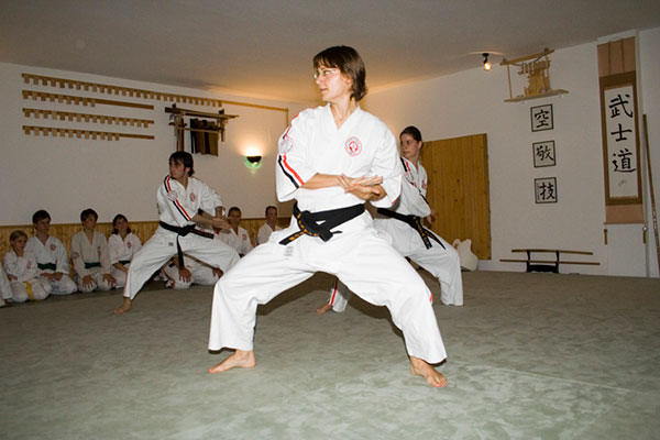 'Kata'   the  traditional    karate  movement   format