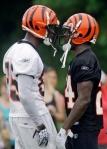"Cincinnati Bengals wide receiver Chad Ochocinco (85) faces off against cornerback Adam ""Pacman"" Jones (24) during the NFL football team's first practice, Thursday, July 29, 2010, in Georgetown, Kentucky. AP Photo/Al Behrman ............ )"