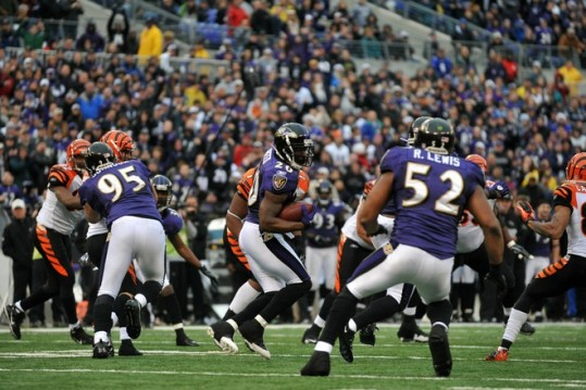 Ed Reed (20) of the Baltimore Ravens returns a last second endzone interception in the first half of the game against the Cincinnati Bengals at M&T Bank Stadium on January 2, 2011 in Baltimore, Maryland. Photo by Larry French/Getty Images ..........